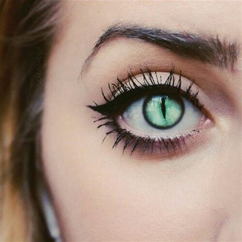 Halloween Contacts No Prescription by 25 Best Ideas About Cat Eye Contacts On Pinterest Cat