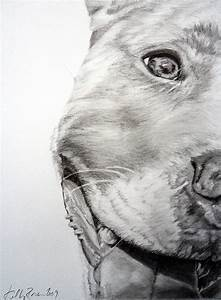 Pin by Nikki Rogers on For the Wall | Pinterest | Pit bull ...