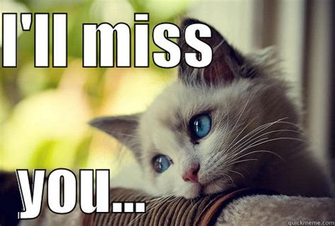 I Will Miss You Meme - image gallery i ll miss you meme