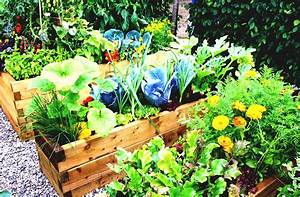Simple vegetable garden ideas for your backyard with for Simple vegetable gardens