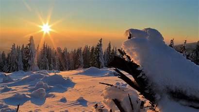 Winter Sunset Snow 4k Trees Drifts Uhd
