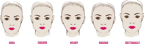 perfect haircut   face shape     proportions