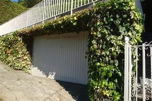 Haus Mit Garten Kaufen : haus kaufen am lago maggiore in ghiffa mit seeblick und garten ~ Whattoseeinmadrid.com Haus und Dekorationen