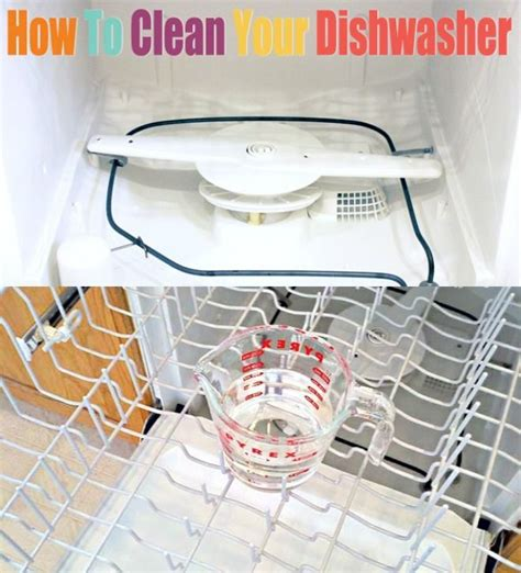 how to clean a dishwasher 17 best images about helpful things on pinterest uses for baking soda mosquitoes bites and