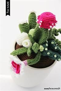 Come fare fiori e foglie all'uncinetto per piante grasse