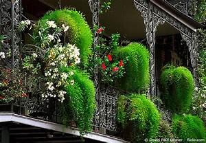 Pflanzen Sichtschutz Balkon : balkon sichtschutz selber bauen wohnen hausxxl wohnen hausxxl ~ Eleganceandgraceweddings.com Haus und Dekorationen