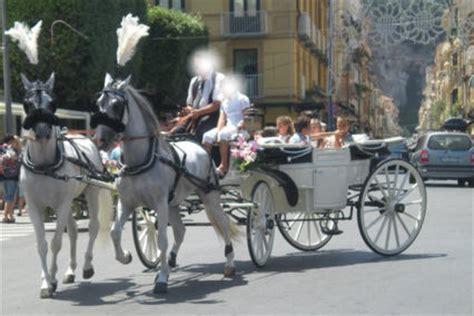 carrozze per cavalli in vendita noleggio carrozza matrimonio cania noleggio carrozza