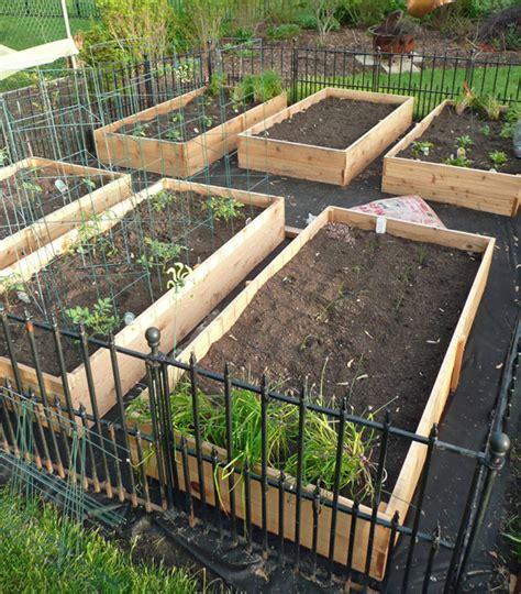 diy garden box vegetable garden box diy 2 anytown usa