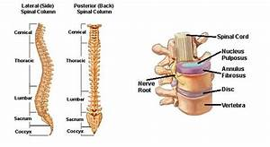 Pijn ribben links achter