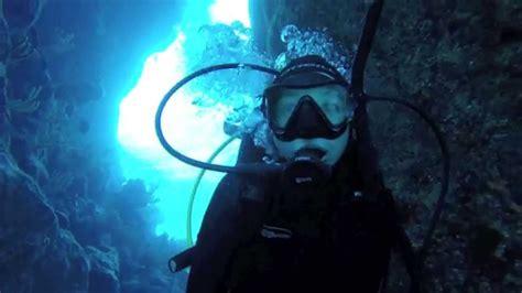 scuba diving  bermuda  youtube