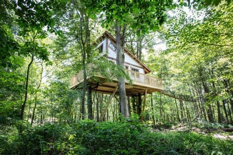 amazing treehouse resort  ohio  mohicans treehouses