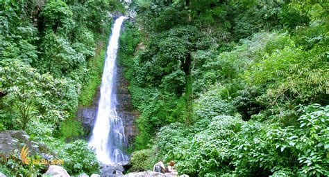 gitgit waterfall singaraja bali places  interest