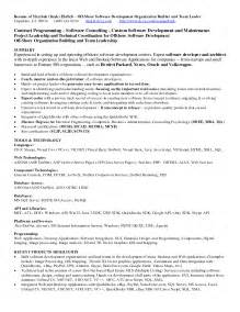 sle resume for java technical lead vb programmer sle resume professional document template