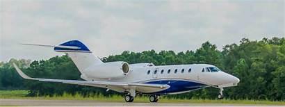 Airport Director Houston Milestone Potential Hits Corporate