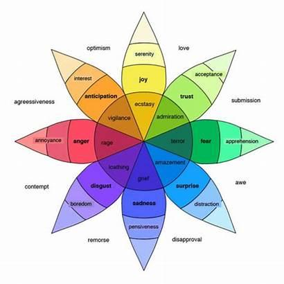 Emotions Facts Basic Amazing Visual Six Emotional