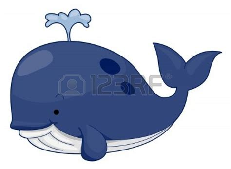Whale Clipart Whale Clipart Www Imgkid The Image Kid Has It