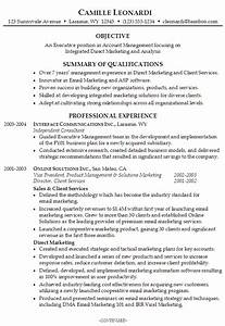 resume for an executive account manager susan ireland With executive resume builder