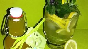 Haus Elektroinstallation Selber Machen : rezept haus limo konzentrat selber machen frag mutti ~ Frokenaadalensverden.com Haus und Dekorationen