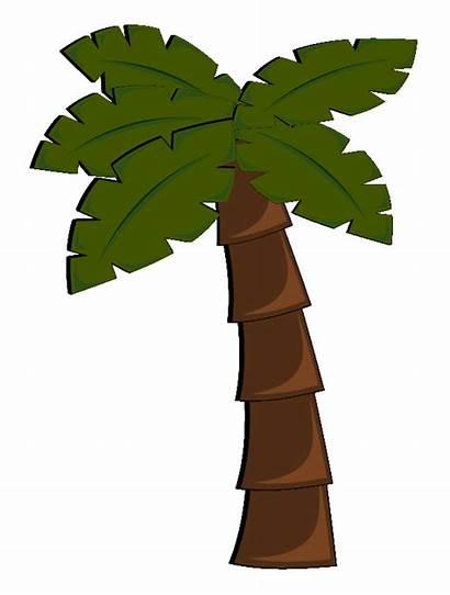 Tree Palm Clipart Vector Complaint Dmca Favorite