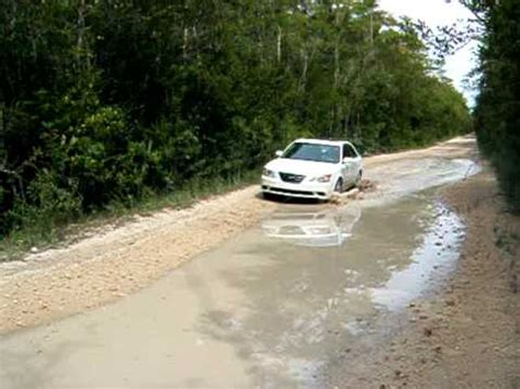 Car Hire Everglades by With My Rental Car On The Loop Road Everglades Fl