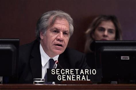 oea convoca sesi 243 n extraordinaria sobre la crisis migratoria de venezolanos