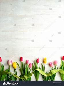 Colorful Tulips Yellow Green Ribbon On Stock Photo ...