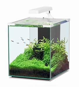 Aquarium Zubehör Günstig : gartenteich teichbedarf aquaristik terraristik sowie heimtierbedarf g nstig kaufen bei ~ Frokenaadalensverden.com Haus und Dekorationen