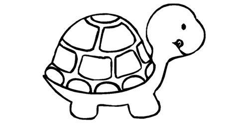 Turtle Coloring Pages For Kids  Download Hd Wallpapers