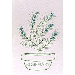 Rosemary Herb Diagram by Herb Rosemary Flowers Form A Lines Stitching Cards