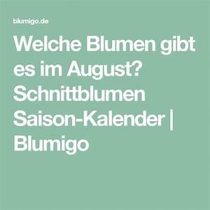 Welche Blumen Blühen Im August : welche blumen gibt es im august schnittblumen saison kalender hochzeit ~ Orissabook.com Haus und Dekorationen