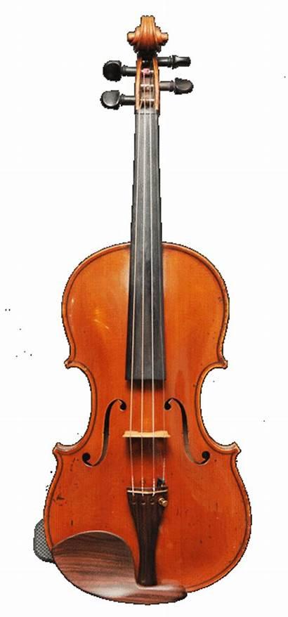 Violin Rest Shoulder Phantom Fitting