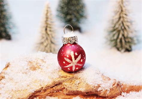 gambar musim dingin kayu merah hari natal pohon