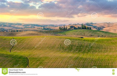 Panoramic View Typical Tuscany Countryside Landscape Stock