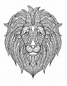 Africa Lion Head Africa Adult Coloring Pages