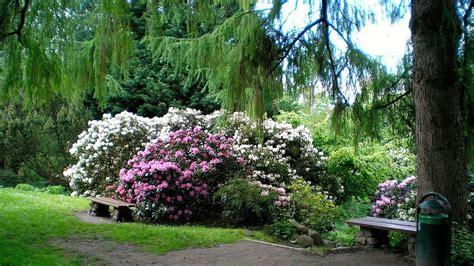 Alter Botanischer Garten Kiel Kiel by Alter Botanischer Garten Kiel Kielregion