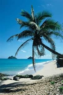 Hawaiian Beaches Hawaii