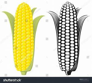 Corn On Cob Sweetcorn Leaves Flat Stock Vector 346889111 ...