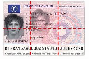 Nombre De Point Permis De Conduire : nombre de points du permis nouveau permis probatoire ~ Medecine-chirurgie-esthetiques.com Avis de Voitures