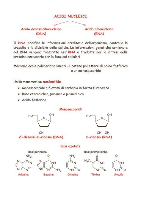 chimica organica dispense acidi nucleici dispense