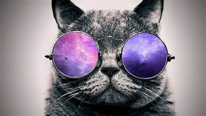 Glasses Wallpapers 1080p Cat Galaxy Cool Px