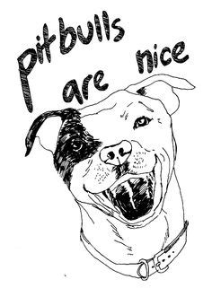 easy drawing   pitbull puppy pit bull coloring page