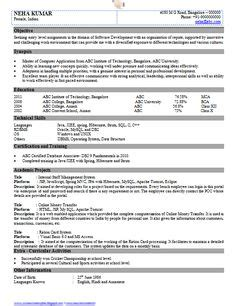 chartered accountant resume format freshers page  cv