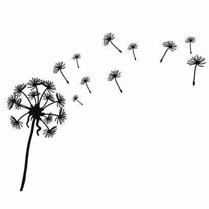 Dandelion Clip Blowing Silhouette Wind Clipart Drawing
