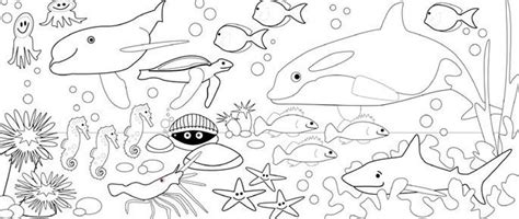 kumpulan sketsa gambar mewarnai binatang laut untuk anak