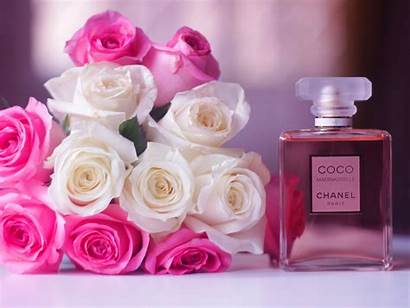 Chanel Coco Perfume Pink Rose Wallpapers Flowers