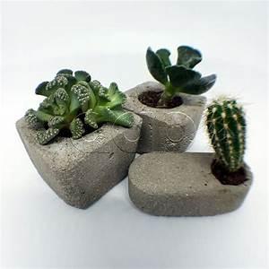 Pflanzen Kübel Beton : accessoires aus beton dinge aus beton ~ Sanjose-hotels-ca.com Haus und Dekorationen