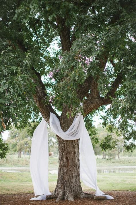 18 stunning tree wedding backdrop ideas for ceremony page 2