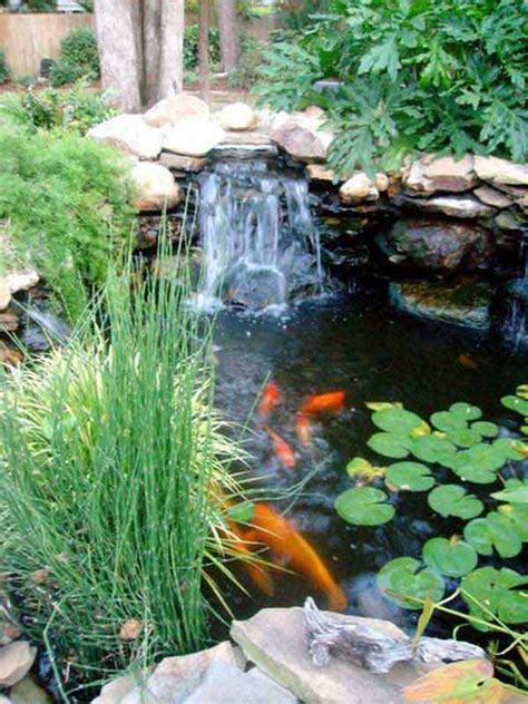 impressive backyard ponds  water gardens amazing