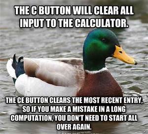 27 Tips from the World's Smartest Duck «TwistedSifter