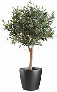 Pot Pour Arbre : prix olivier pot ~ Dallasstarsshop.com Idées de Décoration